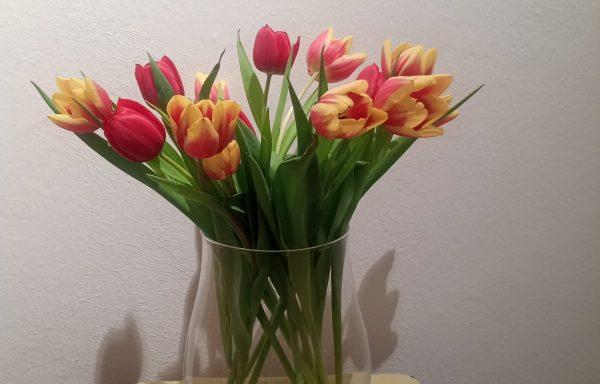 Dekorglas Vasen Windlichter